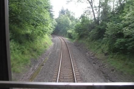 db train